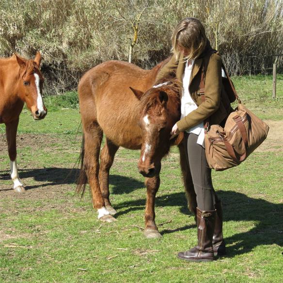 15colgadasdeunapercha_deporte_sport_montar_a_caballo_horse_ridding_equitacion_hipica_gina_carreras_2