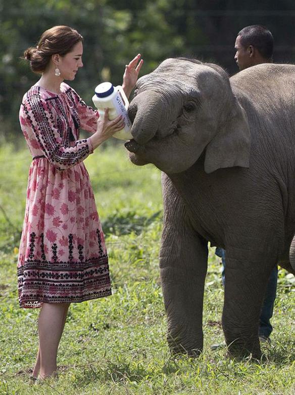 15-colgadas-de-una-percha-the-style-of-el-estilo-de-Kate-Middleton-India-Tour-11