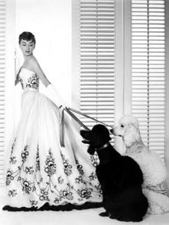 15-colgadas-de-una-percha-que-tipo-de-novia-eres-what-kind-of-bride-are-you-wedding-gown-dress-vestidos-de-novia-bodas-black-and-white-blanco-y-negro-7