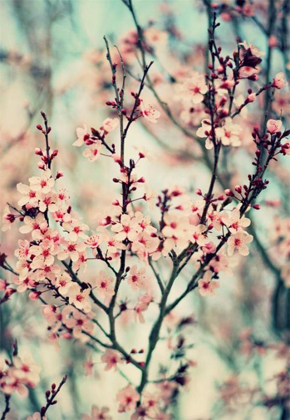 15-colgadas-de-una-percha-march-mood-board-inspiration-inspiracion-marzo-inspo-28
